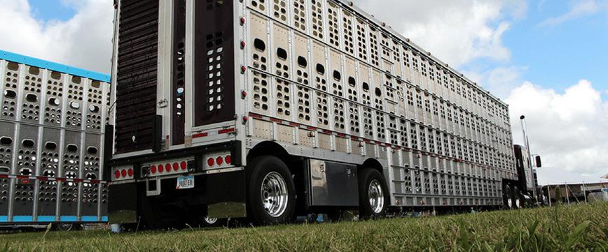 Livestock Truckers